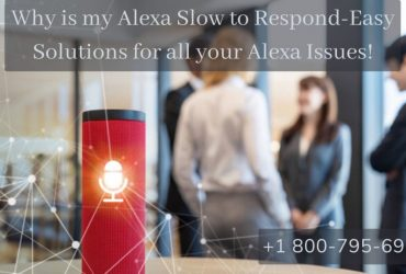 Alexa Not Responding to Voice Commands 1-8007956963 Alexa Echo Not Responding