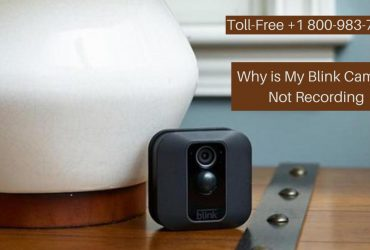 Blink Camera Motion Sensor Not Working/Recording 1-8009837116 Blink Camera Offline