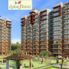 Lotus Homz Affordable Apartmaent In Gurgaon 111