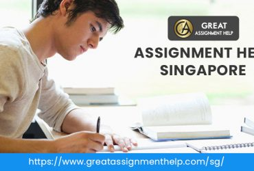 Assignment, Essay, and Dissertation Writing Services in Singapore