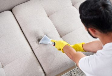Sofa Cleaning Windsor