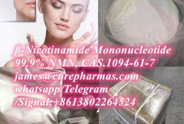 99.9% β-Nicotinamide Mononucleotide NMN 1094-61-7 NR NR-CL NAD+ NADP NADH raw powder factory supplier