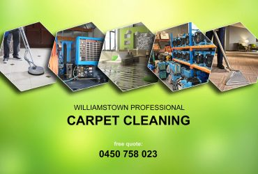 Cheap Carpet Steam Cleaning Services