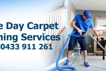 Top Carpet Steam Cleaning Services
