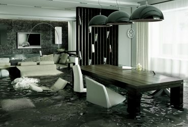 Professional Water Damage Repair Services