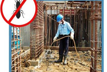 Best Pest Control Services in Indore – Professional Service Provider