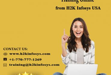 QTP and Selenium Training Online from H2K Infosys USA