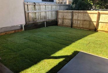 Timber fence, concrete entrance, stepping stones and front grass