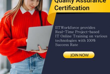Achieve your ideal career by enrolling in quality assurance testing certification in the IIT workforce