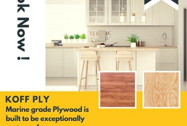 Best quality Domzee MR Plywood in India